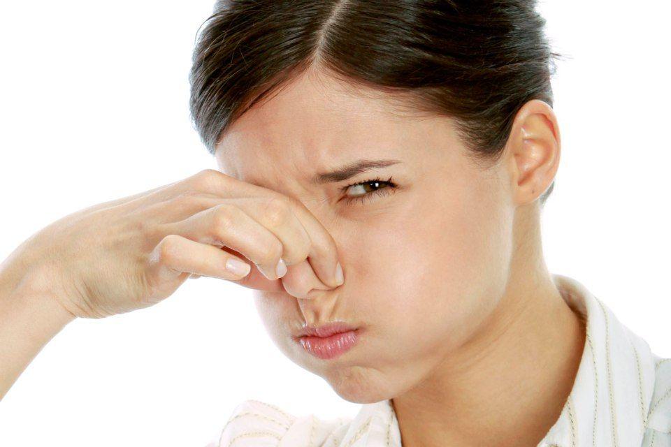 szag torok orr Ascaris képviselői