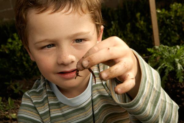 gyermekek reakciója a férgekre otthoni gyógyszerek férgek számára felnőtteknél