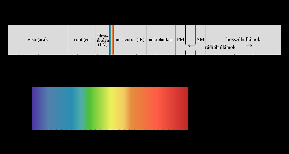széles spektrumú antihelmintikum milyen férgek vannak az ember szemében