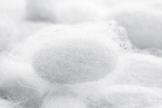 kerekférgek tojások megtermékenyítetlen kezelés