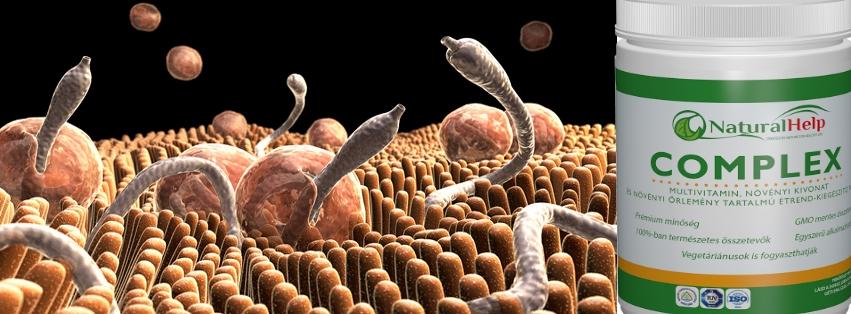 gyógyítsa meg a rossz leheletet az orrból pinworms a mikroszkóp alatt