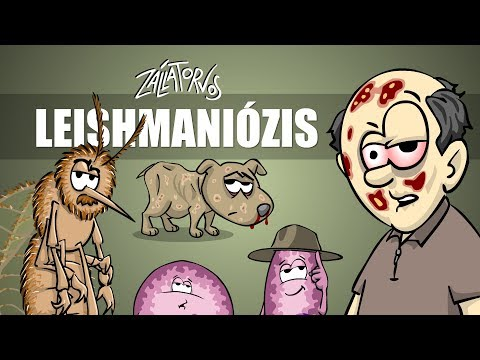 Giardia mensen, megszabadulni a parazitáktól