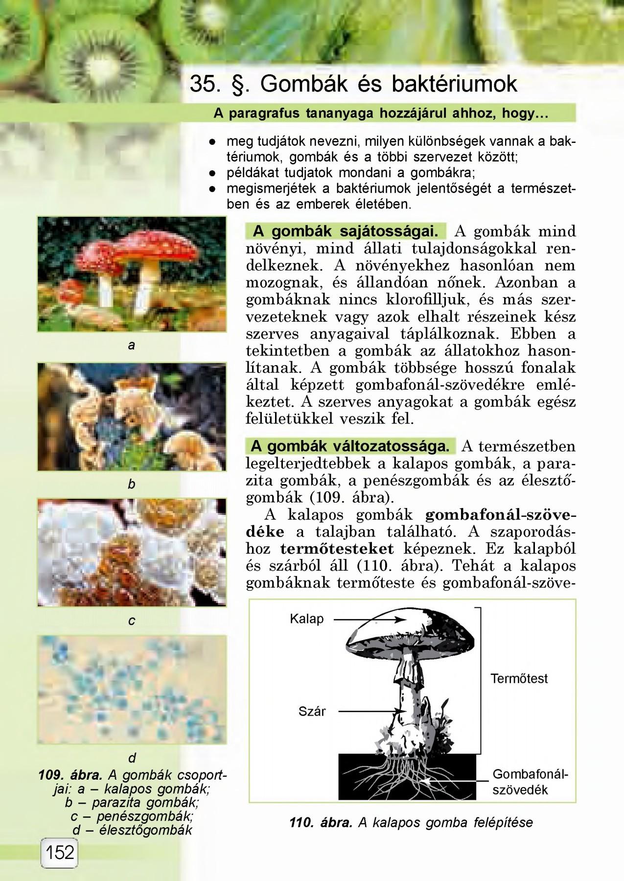 fokhagyma mint féreghajtó nyers élelmezők tisztítása a parazitáktól