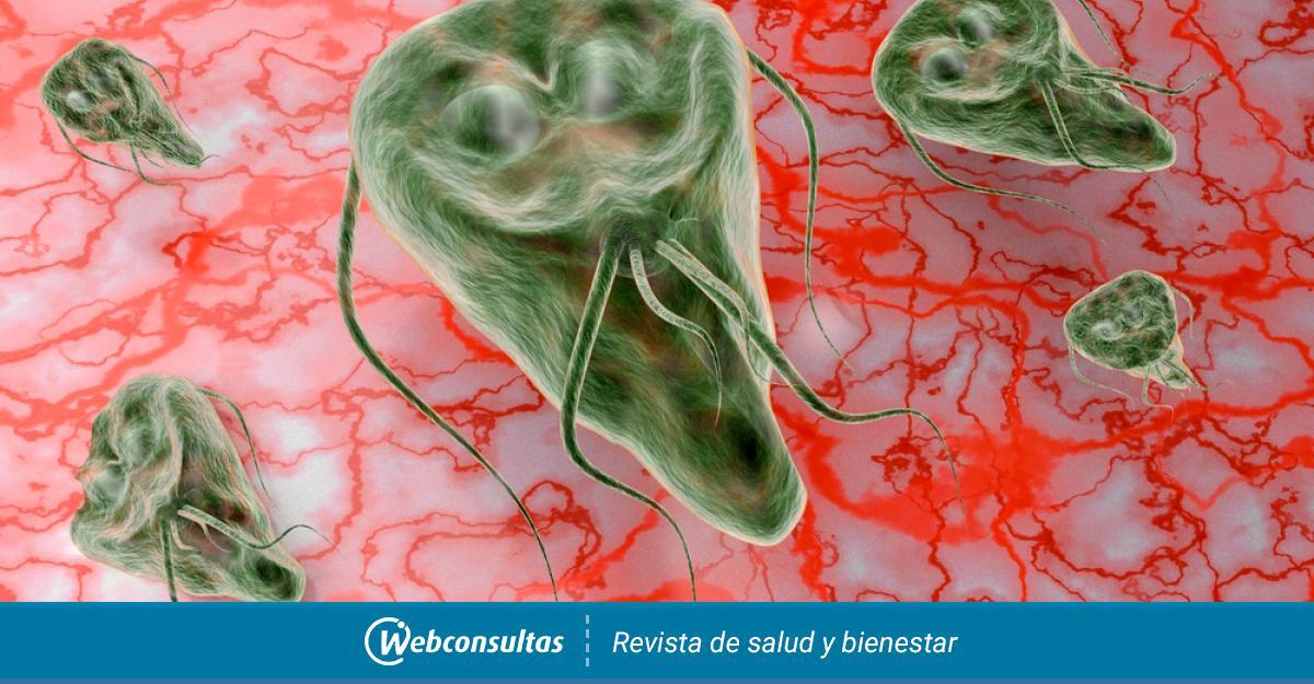 giardiasis y embarazo tratamiento