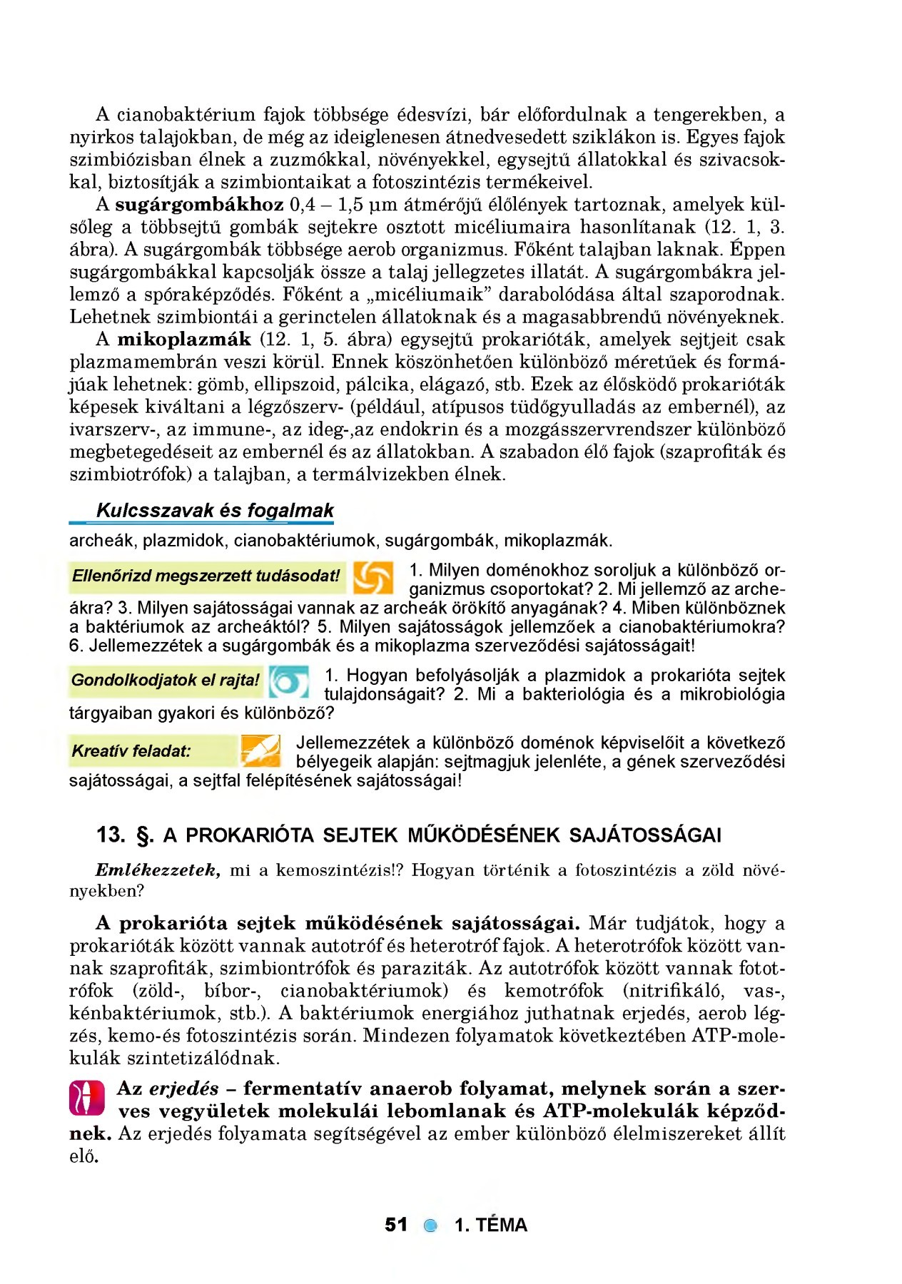 Apicomplexan paraziták apikális komplex