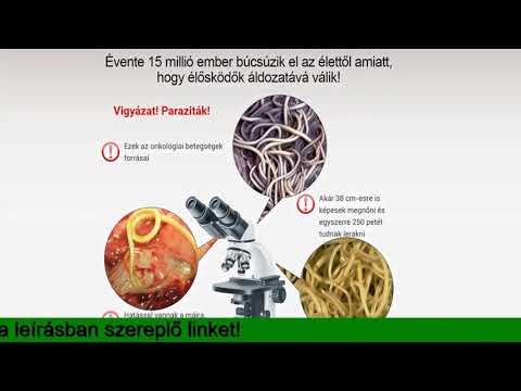 helminthicus fertőzések meghatározása)