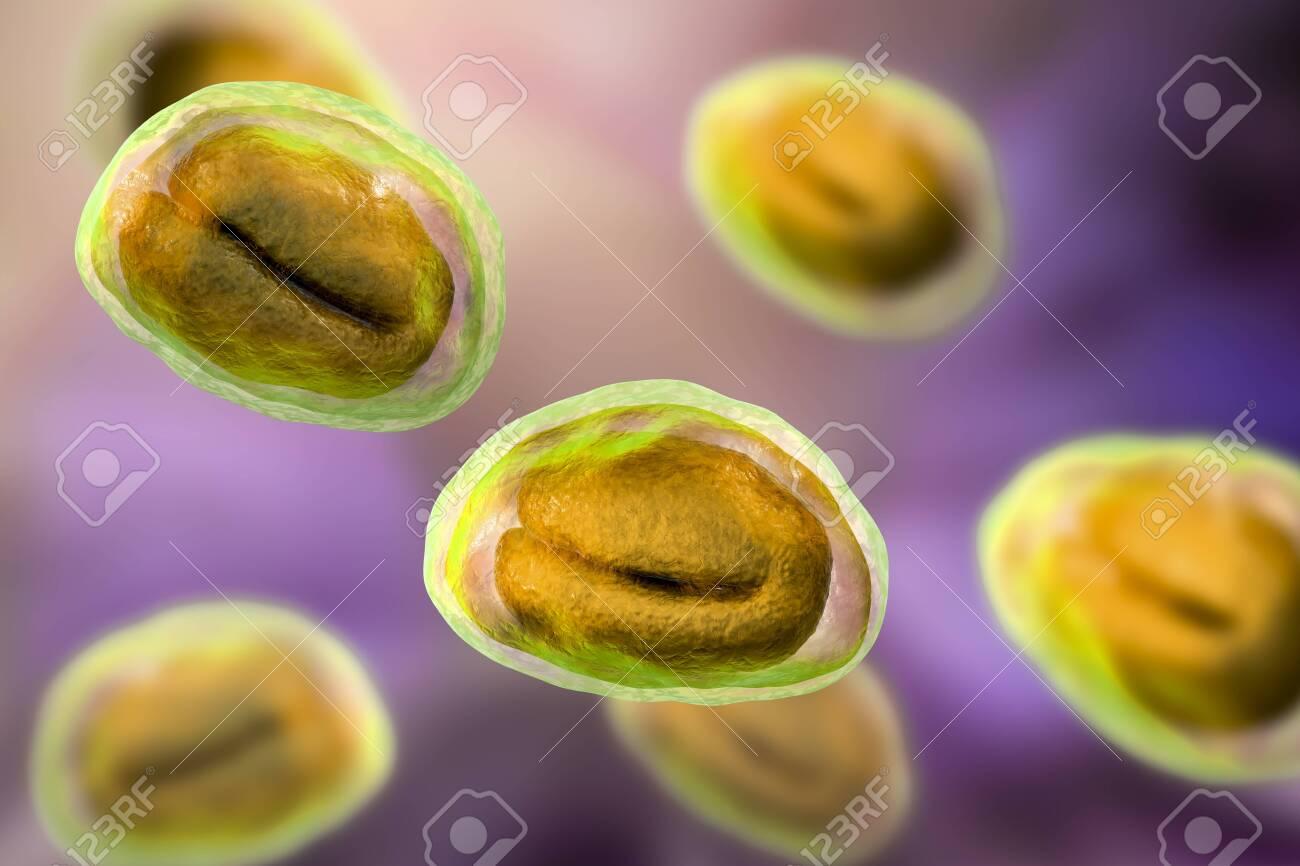 az enterobiosis szűrése az óvodai gyermekekben