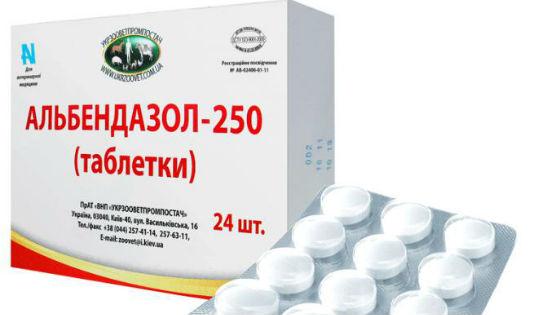 enterobiasis tabletták kezelése parazita minden sorozatot néz