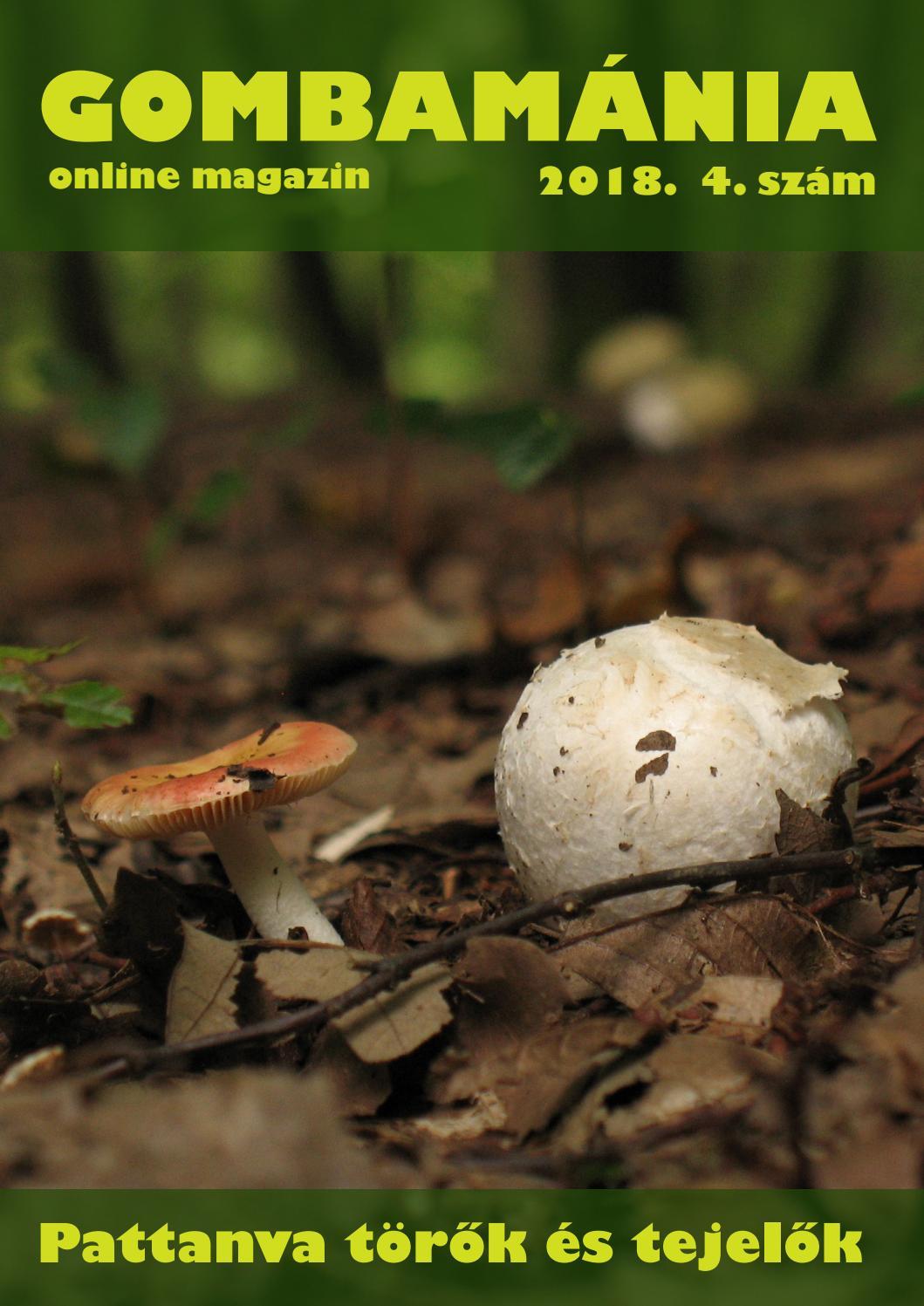 A gombás paraziták példák emberi papillomavírus kenet