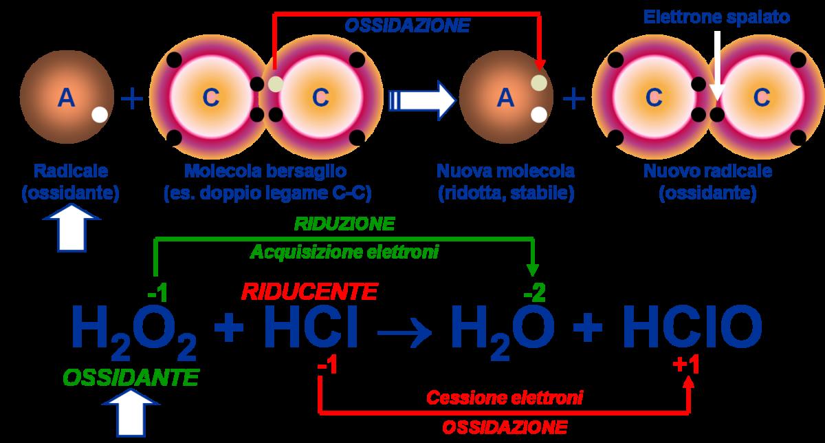 természetes fokális hymenolepidosis a rossz lehelet gyógyszere hogyan lehet megszabadulni