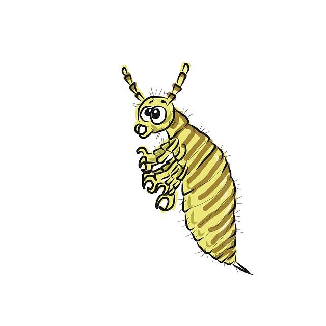 rovar parazita 6 helminthes a parancsnok közelében