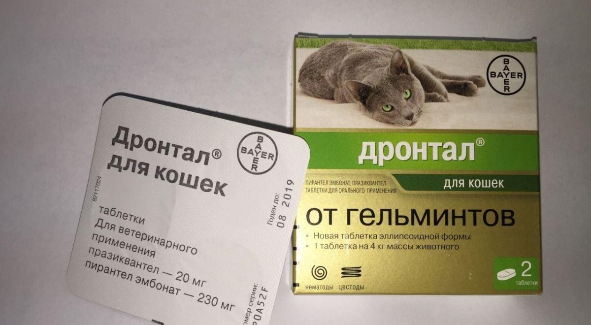 Vásárlás gyűjtemény paraziták ,Avz juhdózisú férgek tabletták