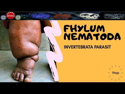 gelfimag gyógyszer a paraziták számára