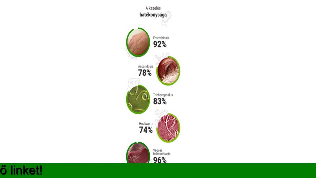 a helminták kórokozó hatása
