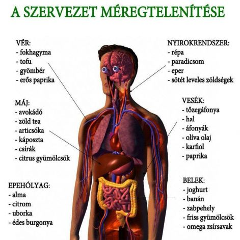 paraziták az emberi májkezelő tablettákban